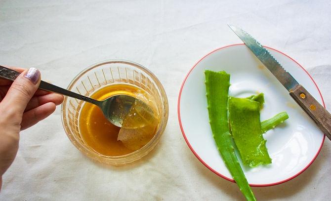 Алоэ с медом для лечения тонзиллита в домашних условиях