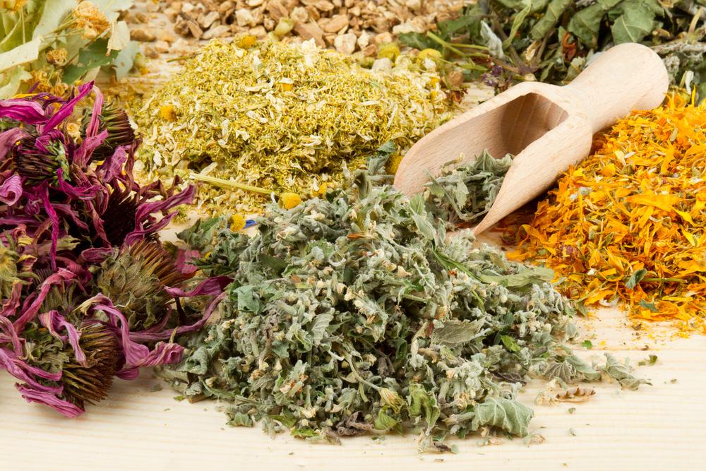 Травяной сбор из солодки, алтея и мать-и-мачехи для лечения сухого кашля