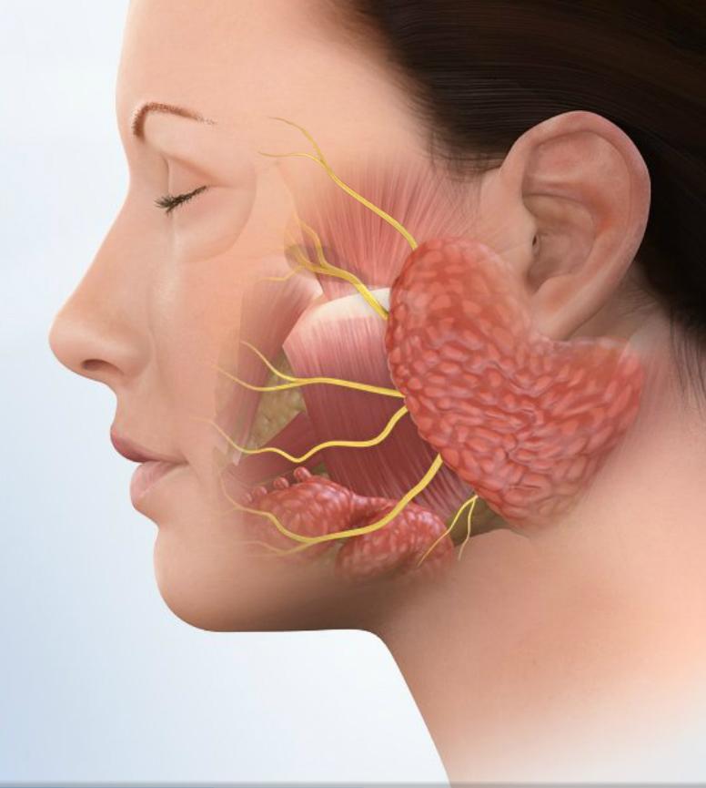 Основные симптомы воспаления слюнных желез